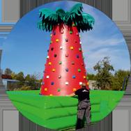 Lezecká stěna palma s obsluhou